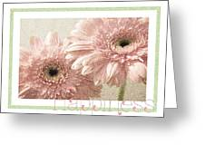 Gerber Daisy Happiness 3 Greeting Card