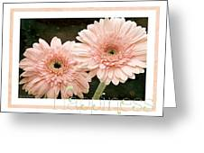 Gerber Daisy Happiness 5 Greeting Card