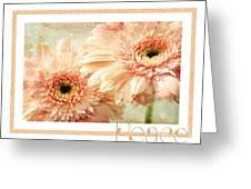 Gerber Daisy Peace 2 Greeting Card