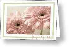 Gerber Daisy Peace 3 Greeting Card