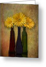 Gerbera Trio Greeting Card