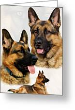 German Shepherd Collage Greeting Card