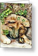 German Shepherd Pup Greeting Card by Joy Reese