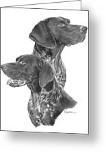 German Short-hair Pointer Greeting Card