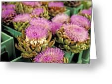 Germany Aachen Munsterplatz Artichoke Flowers Greeting Card