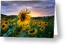 Get Sun Greeting Card