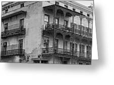 Gettin' By In New Orleans Bw Greeting Card