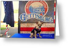 Gettysburg  In Whitehouse Greeting Card