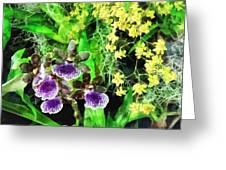 Geyser Jaimie And Golden Fantasy Orchids Greeting Card