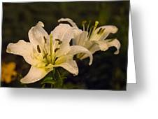 Ghost Lilies Greeting Card