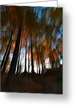 Ghosts Of The Forest Greeting Card