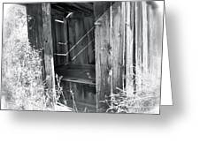 Ghosts Of The Outhouse Rocky Mountains Greeting Card