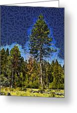 Giant Abstract Tree Greeting Card