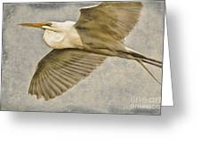 Giant Beauty In Flight Greeting Card
