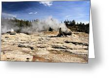 Giant Geyser Group Greeting Card
