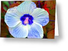 Giant Hibiscus Greeting Card