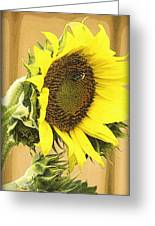 Giant Sunflower With Buds Greeting Card