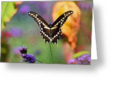 Giant Swallowtail Butterfly Photo-painting Greeting Card