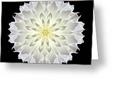 Giant White Dahlia Flower Mandala Greeting Card by David J Bookbinder