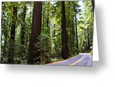 Giants And The Road Greeting Card