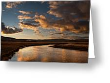 Gibbon River Yellowstone Greeting Card