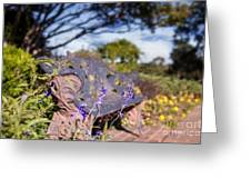 Gilcrease House Garden Flower Greeting Card by Tamyra Ayles