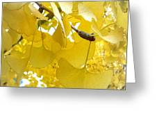 Ginko Tree Greeting Card