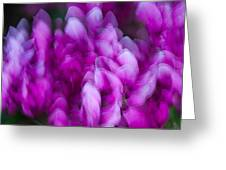 Ginter's Wonderful Petals Greeting Card