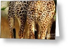 Giraffe Butts 1 Greeting Card