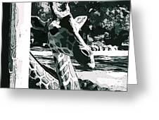 Giraffe Closeup Greeting Card