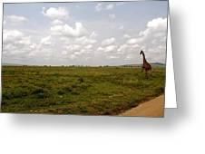 Giraffe Crossing Greeting Card