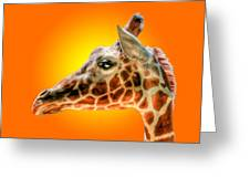 Giraffe Headstudy Greeting Card