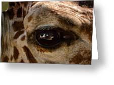 Giraffe Look Into My Eye Greeting Card