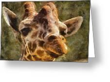 Giraffe Photo Art 01 Greeting Card