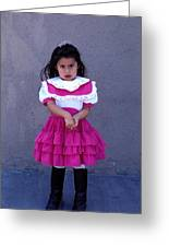 Girl In Pink Dress Greeting Card by Mark Goebel