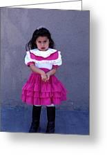 Girl In Pink Dress Greeting Card