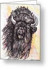 Give Me A Home Where The Buffalo Roam Greeting Card