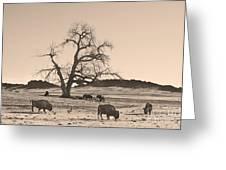 Give Me A Home Where The Buffalo Roam Sepia Greeting Card