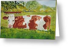 Give Me Moooore Shade Greeting Card by Mary Ellen Mueller Legault