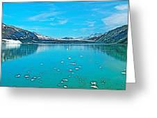 Glacier Bay National Park-alaska Greeting Card