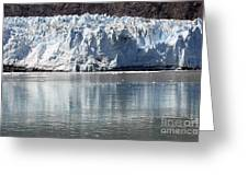 Glacier Bay National Park Greeting Card