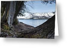 Glacier Park View Greeting Card