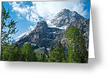 Glacier Seen From Kicking Horse Campground In Yoho Np-bc Greeting Card