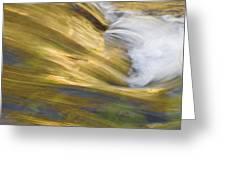 Glacier Stream Glacier National Park Greeting Card