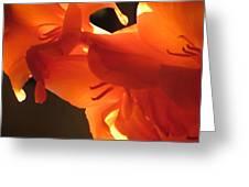 Gladiola Close Up 3 Greeting Card