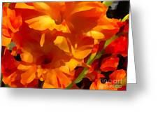 Gladiola Coral Greeting Card