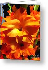 Gladiola Up Close Impression Greeting Card