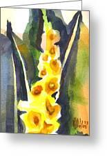 Gladiolas In Wintertime Greeting Card