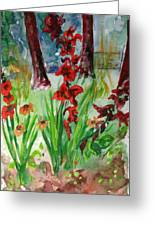 Gladioli-2 Greeting Card