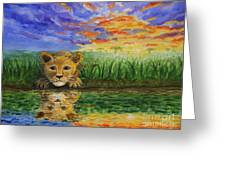Glancing In The Water Greeting Card